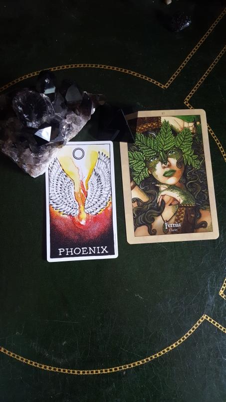 phoenix and fernia.jpg